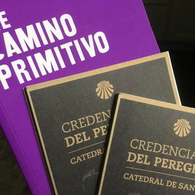 El Camino Primitivo of Spain