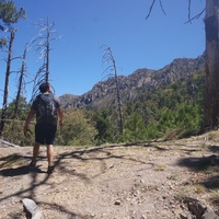 Madera Canyon: The long way